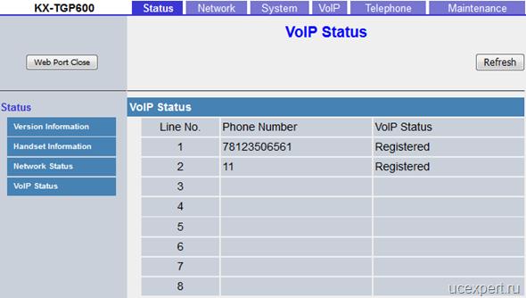 Рис. VoIP Status. Panasonic KX-TGP600.